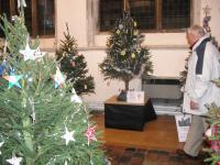 christmas_tree_festival_2013_20140220_1200572887