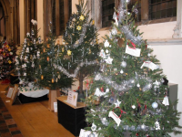 christmas_tree_festival_2013_20140220_1620134936